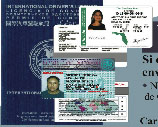 Alpha 7 International Driver's Licence